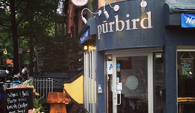 Purbird: Recommended by: Rebecca Taylor (Fashion Designer)