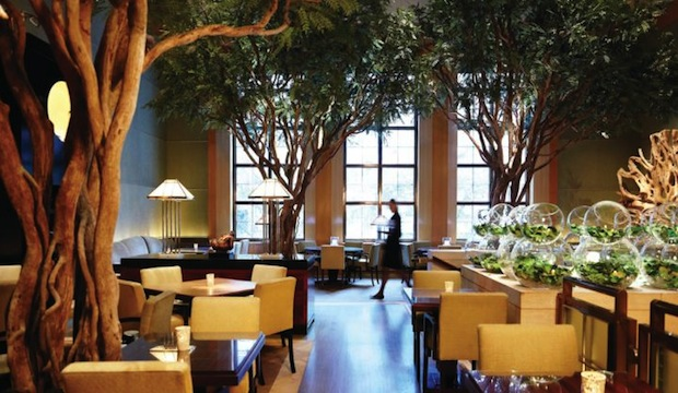 Four Seasons Restaurant: Recommended by: Ben Noriega Ortiz (Designer, The Mondrian Soho), Amy Astley (Editor-in-Chief, Teen Vogue), Lisa Perry (Fashion Designer), Anna Sui (Fashion Designer)