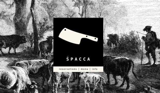 Chi SPACCA: Recommended by: Mike Doyle (Actor), Anthony Carrino (TV Personality)