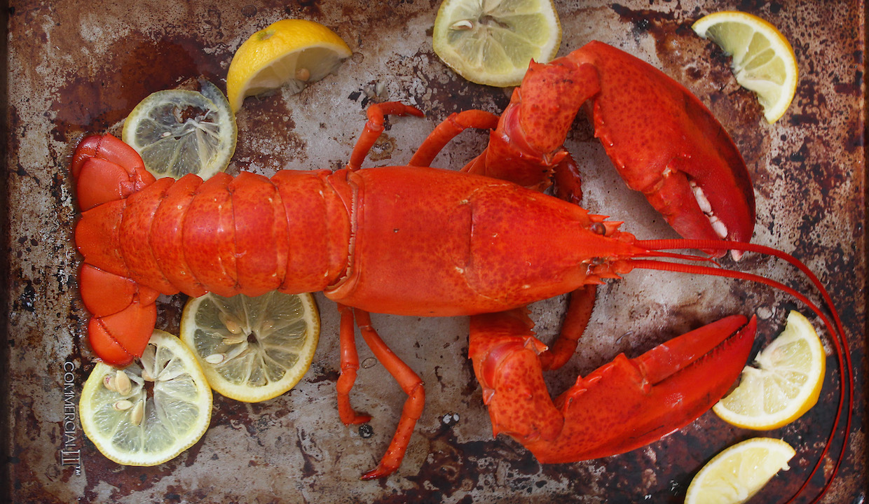 3 Ways To Cook Lobster: Impress Dad This Weekend – The New ...