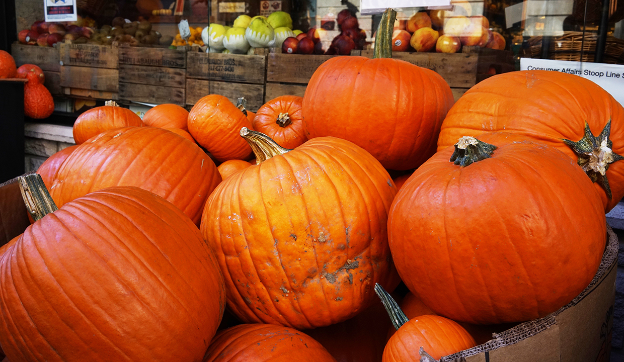 The Top 10 Health Benefits Of Pumpkin Why Fall S
