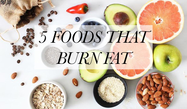 foods-that-burn-fat